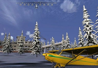 screenshot-Microsoft Flight-2