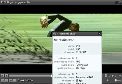 screenshot-FLV Player-1