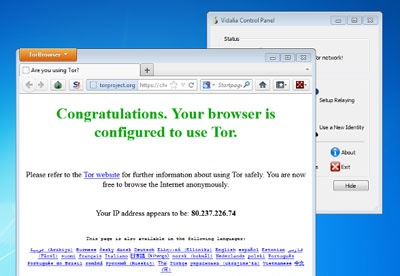 screenshot-Tor Browser Bundle-2